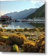 Low Tide At Horseshoe Bay Canada Metal Print