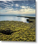 Low Tide At Swami's Metal Print