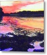 Low Tide On The Penobscot River Metal Print