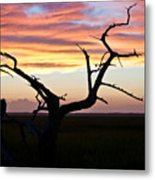 Lowcountry Sunset Metal Print