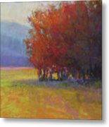 Lower Farm Field Metal Print