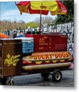 Lucky Dogs Metal Print