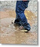 Lucky Puddle  Metal Print