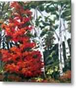 Lucy's Red Tree Metal Print
