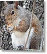 Lunch 2 Metal Print