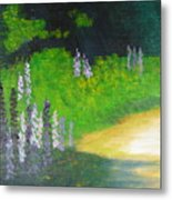 Lupens On Buccaneer Road Metal Print