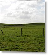 Lush Green Grass On The Cliffs Of Moher Metal Print
