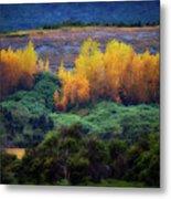 Lush New Zealand Countryside Metal Print