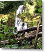 Lush Waterfall Metal Print