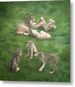 Lynx In The Mist Metal Print
