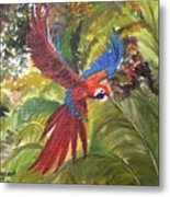 Macaw Parrot 3 Metal Print