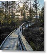 Macgregor Point Boardwalk Metal Print