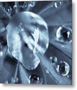 Macro - Water Drops Metal Print