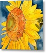 Macro Sunflower Art Metal Print