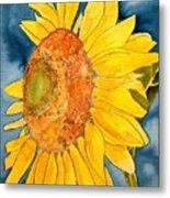 Macro Sunflower Art Metal Print