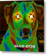 Mad Dog Metal Print