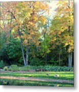 Mae Stecker Park In Shelby Township Michigan Metal Print