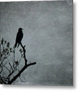 Magestic Crow Metal Print
