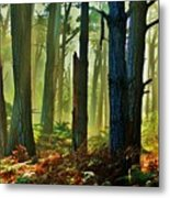 Magic Forest Metal Print by Helen Carson