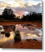 Magic In A Rain Puddle Metal Print