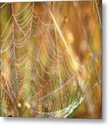 Magic In The Marsh Metal Print