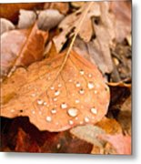 Magic Of Surface Tension Metal Print