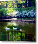 Magical Beauty At The Azalea Pond Metal Print