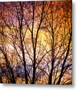 Magical Colorful Sunset Tree Silhouette Metal Print