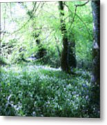 Magical Forest At Blarney Castle Ireland Metal Print