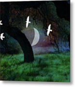 Magical Forest Night Metal Print