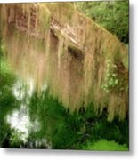 Magical Hall Of Mosses - Hoh Rain Forest Olympic National Park Wa Usa Metal Print