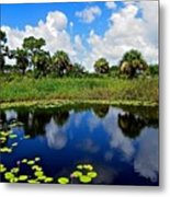Magical Water Lily Pond 2 Metal Print