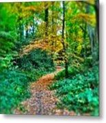 Magical Woodland Walk Metal Print