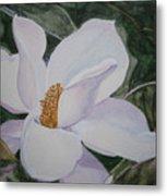 Magnificent Magnolia Metal Print