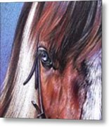 Magnificent Paint Metal Print