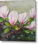Magnolia Blossom - Painting Metal Print