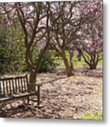 Magnolia Garden 7019 Metal Print