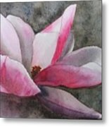 Magnolia In Shadow Metal Print
