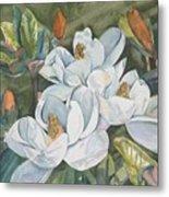 Magnolias five Metal Print