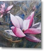 Magnolias In Shadow Metal Print