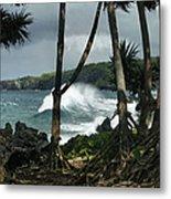 Mahama Lauhala Keanae Peninsula Maui Hawaii Metal Print