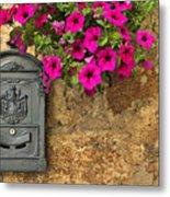Mailbox With Petunias Metal Print