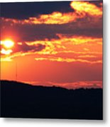 Main Attraction Metal Print
