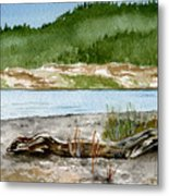 Maine Beach Wood Metal Print