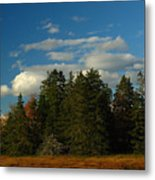 Maine Landscape Photography Metal Print