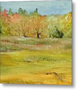 Maine Marsh Metal Print