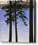 Maine Sparkle Metal Print