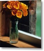 Maine Windowsill Metal Print