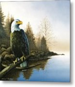 Majestic Light - Eagle Metal Print