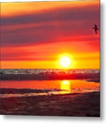 Majestic Moments Metal Print